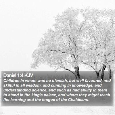 Daniel 1:4 KJV Bible Verse Image