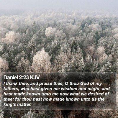 Daniel 2:23 KJV Bible Verse Image