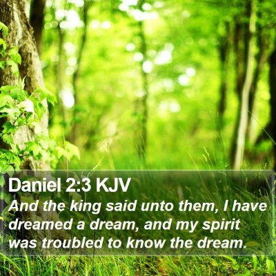 Daniel 2:3 KJV Bible Verse Image