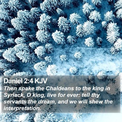 Daniel 2:4 KJV Bible Verse Image