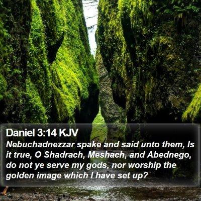 Daniel 3:14 KJV Bible Verse Image