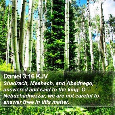 Daniel 3:16 KJV Bible Verse Image