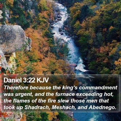 Daniel 3:22 KJV Bible Verse Image