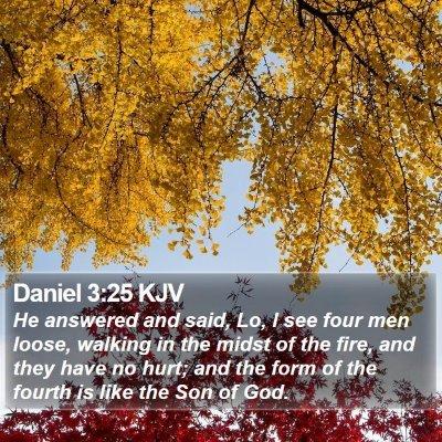 Daniel 3:25 KJV Bible Verse Image