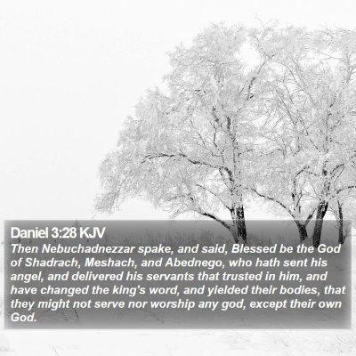 Daniel 3:28 KJV Bible Verse Image