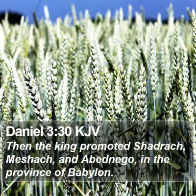 Daniel 3:30 KJV Bible Verse Image