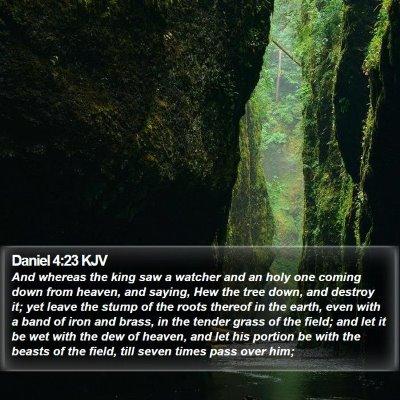 Daniel 4:23 KJV Bible Verse Image