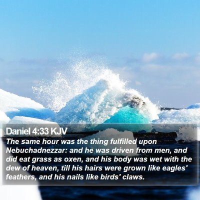 Daniel 4:33 KJV Bible Verse Image