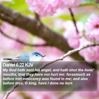 Daniel 6:22 KJV Bible Verse Image
