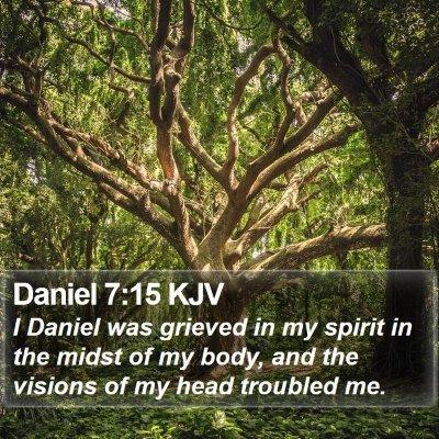 Daniel 7:15 KJV Bible Verse Image