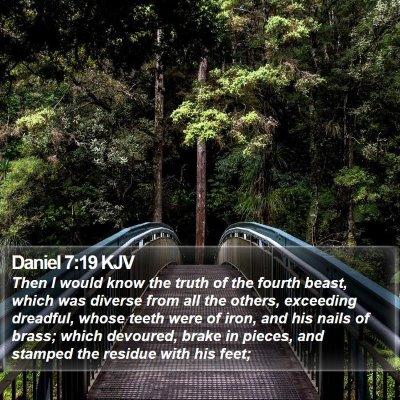 Daniel 7:19 KJV Bible Verse Image