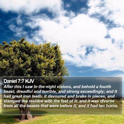 Daniel 7:7 KJV Bible Verse Image