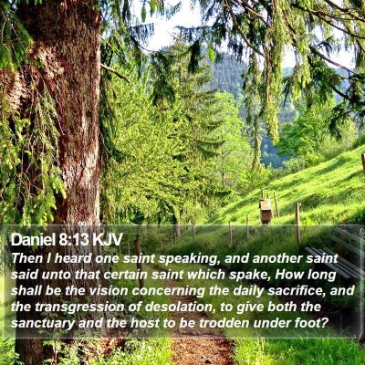 Daniel 8:13 KJV Bible Verse Image