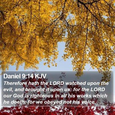 Daniel 9:14 KJV Bible Verse Image