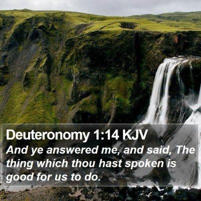 Deuteronomy 1:14 KJV Bible Verse Image