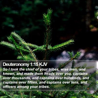 Deuteronomy 1:15 KJV Bible Verse Image