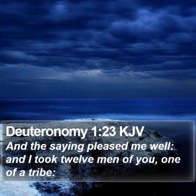 Deuteronomy 1:23 KJV Bible Verse Image