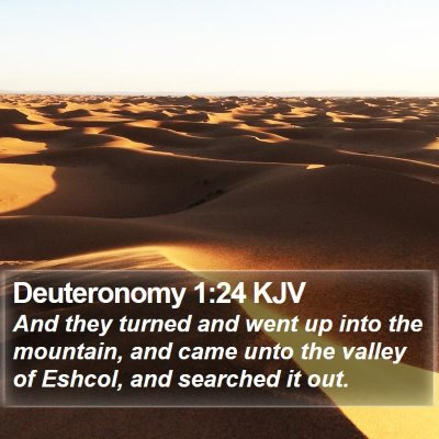 Deuteronomy 1:24 KJV Bible Verse Image
