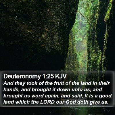 Deuteronomy 1:25 KJV Bible Verse Image