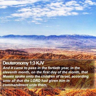 Deuteronomy 1:3 KJV Bible Verse Image