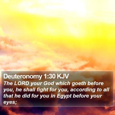 Deuteronomy 1:30 KJV Bible Verse Image