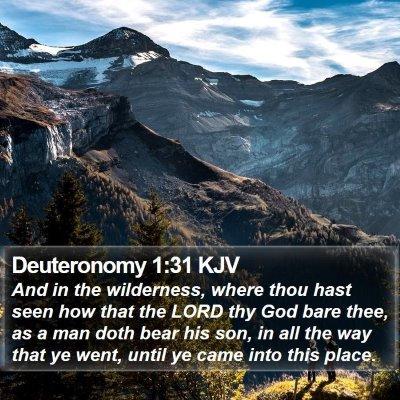 Deuteronomy 1:31 KJV Bible Verse Image