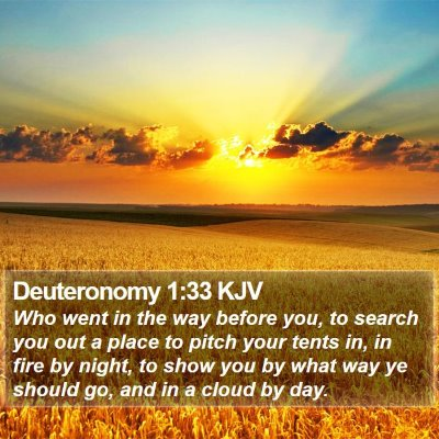Deuteronomy 1:33 KJV Bible Verse Image