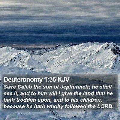 Deuteronomy 1:36 KJV Bible Verse Image