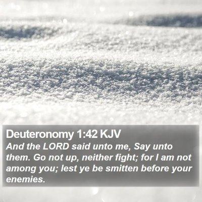 Deuteronomy 1:42 KJV Bible Verse Image