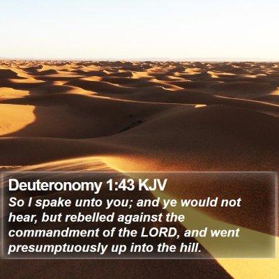 Deuteronomy 1:43 KJV Bible Verse Image