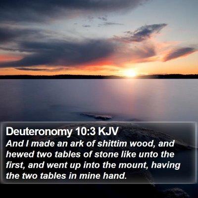 Deuteronomy 10:3 KJV Bible Verse Image
