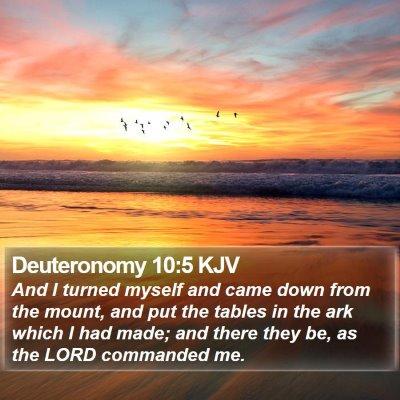 Deuteronomy 10:5 KJV Bible Verse Image