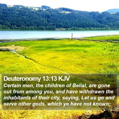 Deuteronomy 13:13 KJV Bible Verse Image