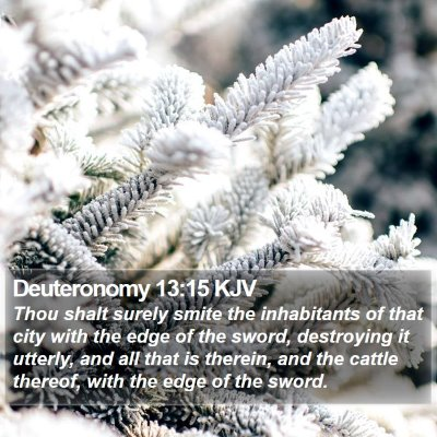 Deuteronomy 13:15 KJV Bible Verse Image