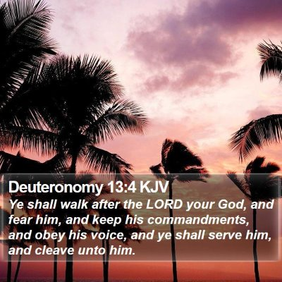 Deuteronomy 13:4 KJV Bible Verse Image