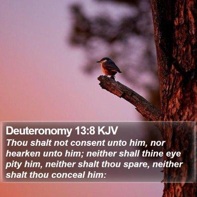 Deuteronomy 13:8 KJV Bible Verse Image