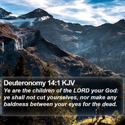 Deuteronomy 14:1 KJV Bible Verse Image