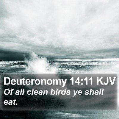 Deuteronomy 14:11 KJV Bible Verse Image