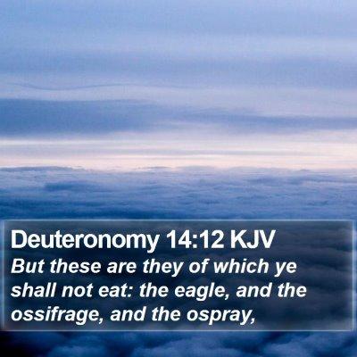 Deuteronomy 14:12 KJV Bible Verse Image