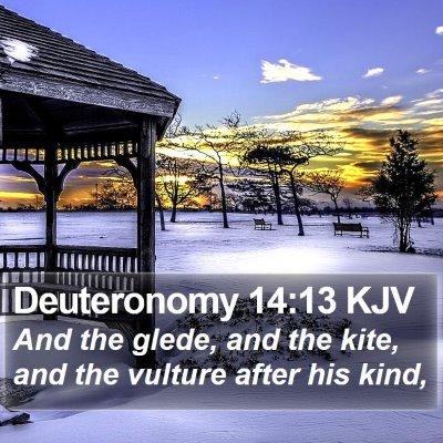 Deuteronomy 14:13 KJV Bible Verse Image
