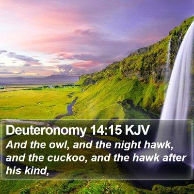 Deuteronomy 14:15 KJV Bible Verse Image