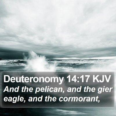 Deuteronomy 14:17 KJV Bible Verse Image