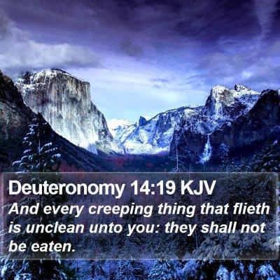 Deuteronomy 14:19 KJV Bible Verse Image