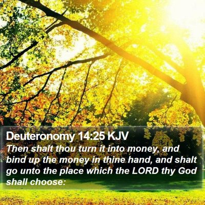 Deuteronomy 14:25 KJV Bible Verse Image