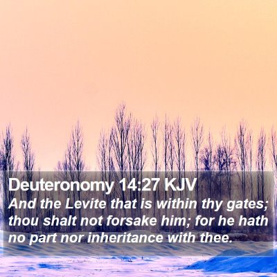 Deuteronomy 14:27 KJV Bible Verse Image
