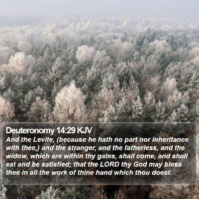 Deuteronomy 14:29 KJV Bible Verse Image