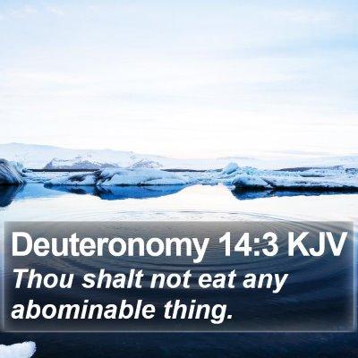 Deuteronomy 14:3 KJV Bible Verse Image
