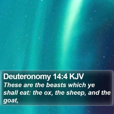 Deuteronomy 14:4 KJV Bible Verse Image