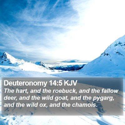 Deuteronomy 14:5 KJV Bible Verse Image