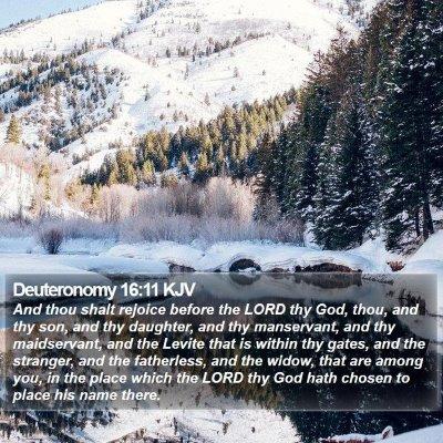 Deuteronomy 16:11 KJV Bible Verse Image